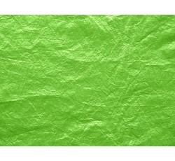 Tafty - taft 7019 světle zelený