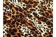 úplet plavkovina leo leopard