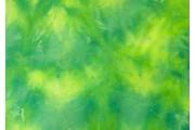 úplet plavkovina sport zelená